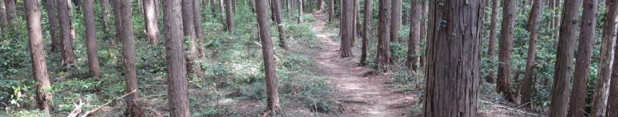 里山森林調査隊の公式ブログ